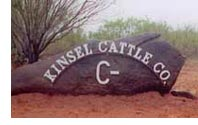Kinsel Sign